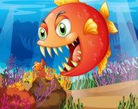 Un depredador y una presa debajo del mar Foto de archivo libre de regalías
