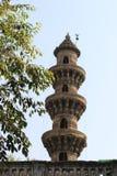 Un des minarets de secousse se ferment  photos libres de droits