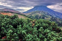 Un des volcans du Kamtchatka Les volcans du Kamtchatka fascinent Leur myst?re attire beaucoup de touristes image libre de droits