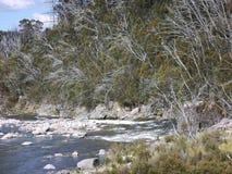 Un detalle de un río de la montaña Imagen de archivo libre de regalías