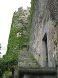Un dettaglio di un castello della Scozia fotografie stock libere da diritti