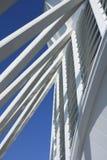Un dettaglio di una delle costruzioni di Santiago Calatrava a Valencia fotografie stock libere da diritti