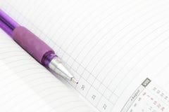 Un diario e una penna Immagine Stock Libera da Diritti