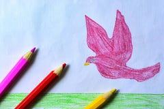 Un dibujo del ` s del niño de una paloma, de una hierba y de un cielo del rosa con los lápices coloreados Fotos de archivo