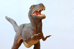 Un dinosaur de Rex de Tyrannosaurus Photo stock