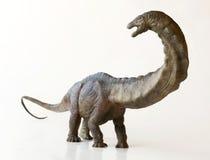 Un dinosaure grand d'Apatosaurus, ou lézard trompeur Photographie stock libre de droits