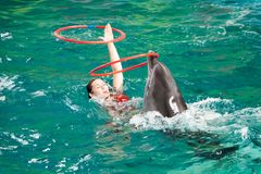 Un discours des entraîneurs avec des dauphins dans un dolphinarium Photos stock