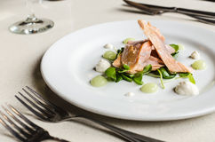 Un dispositivo d'avviamento con i pezzi di color salmone, spinaci, salsa del cetriolo Immagini Stock Libere da Diritti