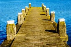 Un dock d'amarrage pour des bateaux dans la réserve d'oiseaux de Veluwemeer Photographie stock