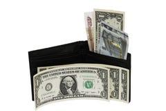 Un dollaro Fotografia Stock