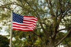 Un drapeau américain soufflant dans la brise un beau jour en parc images stock