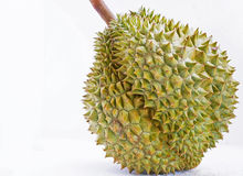 Un durian Photos stock