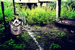 Un edificio abandonado, capturado por naturaleza Imagen de archivo libre de regalías