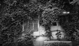 Un edificio ocultado Fotos de archivo libres de regalías