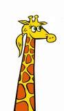 Un ejemplo divertido de una jirafa agradable Fotos de archivo libres de regalías