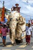 Un elefante ceremonial camina a lo largo del camino durante el Hikkaduwa Perahara en Sri Lanka Foto de archivo