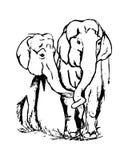 Un elefante di due amanti illustrazione di stock