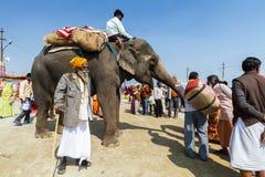 Un elefante en el Kumbha Mela, la India Fotografía de archivo libre de regalías