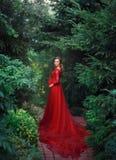 Un elegante, donna incinta cammina in un bello giardino in un vestito rosso lussuoso e costoso con un treno lungo artistico immagini stock libere da diritti