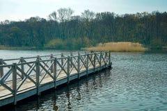 Un embarcadero que lleva a un lago con un bosque fotos de archivo libres de regalías
