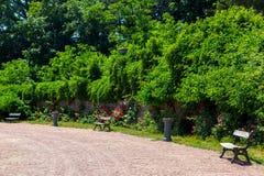 Un endroit à détendre avec les bancs en bois images libres de droits