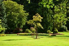 Un endroit pour la réflexion dans Rose Garden Stanley Park Vancouver Photos libres de droits