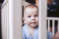 Un enfant dans une huche s'émerveille à ce qui se produit Photos stock