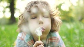 Un enfant heureux se trouve sur un pré d'été avec une fleur dans sa main Un garçon aux cheveux bouclés soufflant sur un pissenlit banque de vidéos