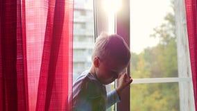Un enfant se tient sur le rebord de fenêtre et regarder la fenêtre le soleil sur les rideaux en rouge de fenêtre banque de vidéos
