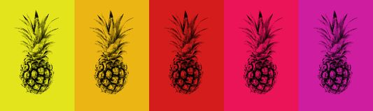 Un ensemble d'ananas colorés Images stock