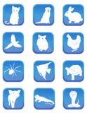 Icônes d'animal familier Images libres de droits