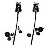 Un ensemble d'icônes de deux roses noires Illustration de vecteur Photos libres de droits