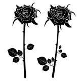 Un ensemble d'icônes de deux roses noires Illustration de vecteur Photos stock