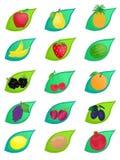Icônes de fruit Photo stock