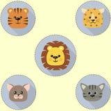 Un ensemble d'icônes en cercle d'un chat, un tigre, un lion, un léopard illustration libre de droits