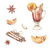 Un ensemble d'ingrédients pour le vin chaud Illustration d'aquarelle d'aspiration de main Photo stock