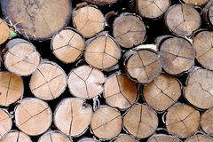 Un ensemble de bâton en bois pour l'endroit du feu Photo stock