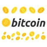 Un ensemble de bitcoins Différentes poses des bitcoins Quelque bitcoin en vol Le bitcoin, le marché boursier et les affaires de C Photographie stock libre de droits