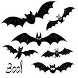 Un ensemble de différent dans des battes de nature approprié à Halloween Images stock