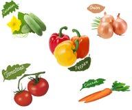 Un ensemble de fruits végétaux sur un fond blanc Photo libre de droits