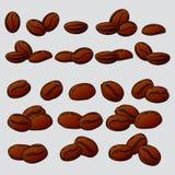 Un ensemble de grains de café Photos stock
