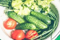 Un ensemble de légumes frais sur le plan rapproché blanc de fond Pile des légumes dans l'eau - courge à la moelle, oignons Photo stock