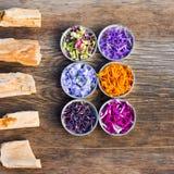 un ensemble de pierres et de pétales colorés frais et secs de fleur Image libre de droits
