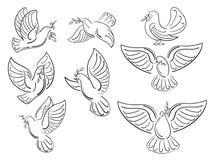 Un ensemble de pigeons du monde avec une branche d'une olive Collection de colombes blanches volantes Logos avec les oiseaux styl Photos stock