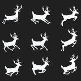 Un ensemble de silhouettes des cerfs communs courants Photos stock