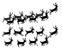 Un ensemble de silhouettes des cerfs communs courants Photo libre de droits