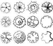 Un ensemble de symboles de cime d'arbre illustration de vecteur
