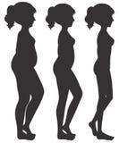 Un ensemble de transformation de corps de femme Photographie stock