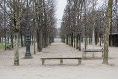 UN entre àRvores De Un parque banco deserto Paryż em Dia De Inverno um Fotografia Stock