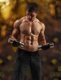Un entrenamiento masculino muscular Imágenes de archivo libres de regalías